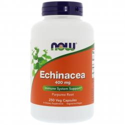 Now Foods Echinacea 400 mg 250 capsules